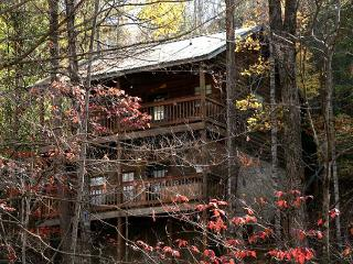 Semi-Secluded 1 bedroom cabin close to Dollywood and the Parkway Pigeon Forge, Sevierville