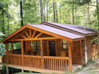 1 Bedroom Secluded Pet Friendly Cabin Off Dollywood Lane Pigeon Forge TN, Sevierville