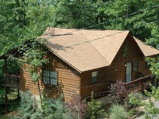 2bedroom pet friendly cabin with hot tub,jacuzzi tub, 4 miles from Dollywood, Sevierville