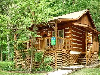1 Bedroom Pet-Friendly Cabin Close to Downtown Gatlinburg and National Park