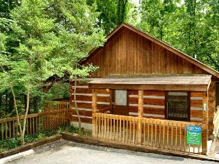 1 Bedroom Gatlinburg Studio Cabin, close to Downtown and Community Center