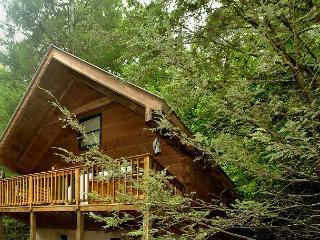 1 Bedroom Log Cabin Within Walking Distance to Gatlinburg Community Center