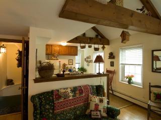 Bird House Suite (M802), Boston