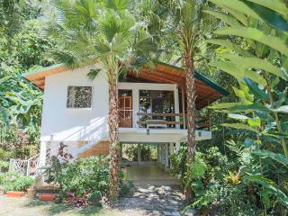 EXOTIC ESCAPE, 3BR RAINFOREST HOME, GATED COMMUNIT, Parc national Manuel Antonio