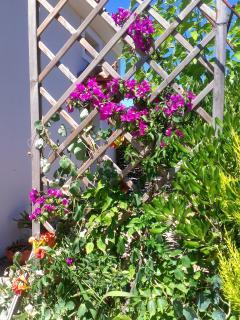 Sendoukia Country Villa - Entrance side.