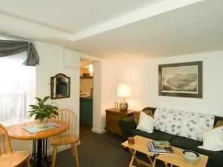 Monument House Furnished Apartment (M466), Boston