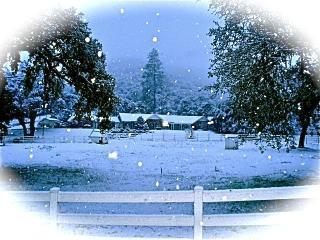 Beautiful Equestrian Estate in Ahwahnee Riverbend
