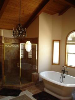 Master Bathroom Shower and Tub