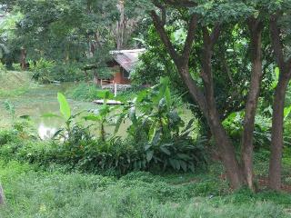 A Peaceful Cosy Place in Chiang Mai