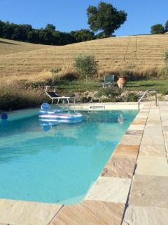 from the pool you can watch buzzards and swifts