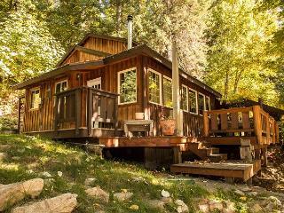 Der Tree Haus~35 min drive to Leavenworth, private, hot tub, Wi-Fi, woodstove