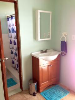 Comfortable Bathroom with Sink Separate from Toilet & Shower