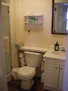 View of the Betsie bathroom