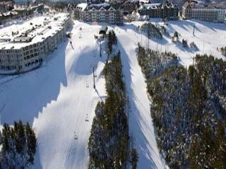 Mountain Lodge #207/255 are conveniently located just outside the Ballhooter & Skidder chair lifts.