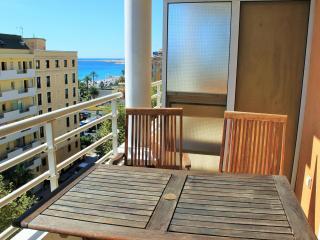 Top floor 2 bedroom apartment  100 M from  Promenade des Anglais / beach.