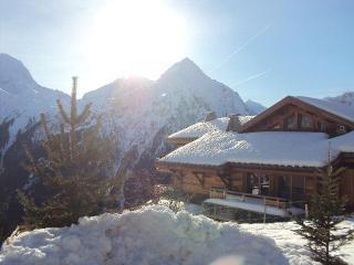 Très beau 2 pièces, plein soleil, Les Deux-Alpes