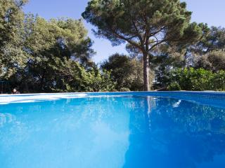Catalunya Casas: Villa Sallent for 5 people, only 35km from Barcelona and the be