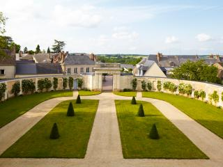 Luxury Chateau in the Loire Valley - Chateau de la Loire, Conflans-sur-Anille