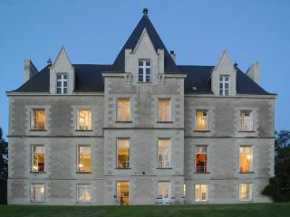 Chateau Vienne holiday vacation chateau large villa rental france, loire valley,