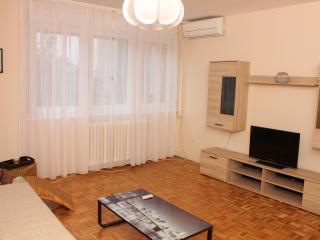 Belgrade - 1 bedroom condo - newly renovated