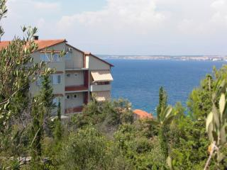 Villa Dinastija - Location d'appartements en Croatie avec piscine