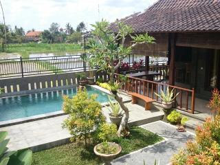 Surya House, NEW 2 bdrm, Pool, Rice Fields, Ubud