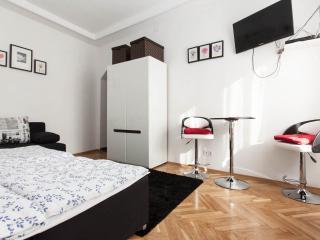 Downtown - Dario apartman with air conditioned