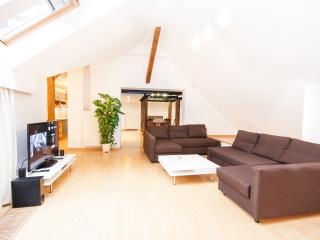 Narodni Loft 3BR, 2BA Penthouse Old Town apartment, Prague