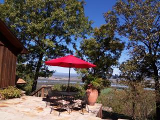 Edgehouse on Petit Jean Mtn.- AR River view!!, Morrilton