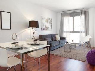 Modern Apartment  Eixample  0329545/0