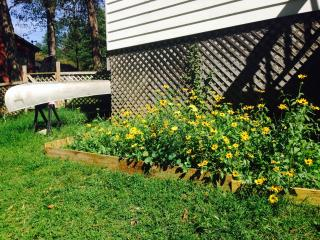 lovely gardens and a canoe to explore the creek