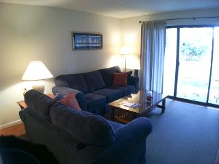 Ocean Edge: St.  Level 2 BR, 2 Bath (sleeps 5), 2 A/C's w/pool (fees apply) - EA0115