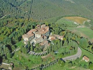 castello in Chianti ginestra