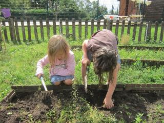 Young visitors enjoy digging up fresh veg