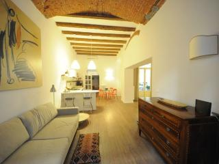 Elegant apartment near S. Croce and the Dome, Florence