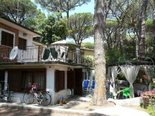 Apartment with terrace near the beach,Camelia