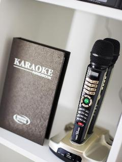Sing Your Heart Out On Karaoke Nights