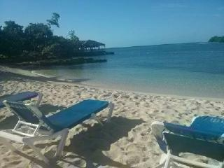 The Big Blue Sea,sea view, on the beach, Wifi, Negril