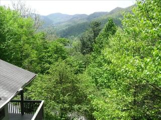 Mountain Views; Minutes from Historic Downtown Way, Waynesville