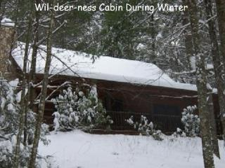 WIL-DEER-NESS CABIN-Hot Tub*Firepit*Secluded*River