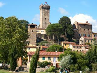 Authentic Tuscany - Charming  - Casa Due Torri