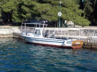 Our boat for excursions in National Park Brijuni
