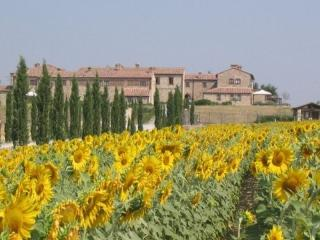 Country resort a zona Crete Senesi T6-Bs, Asciano