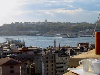 spacious and elegant, in the heart of galata, Estambul