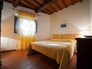 2 bedroom with pool in Florence122 - TFR56, Castelfiorentino