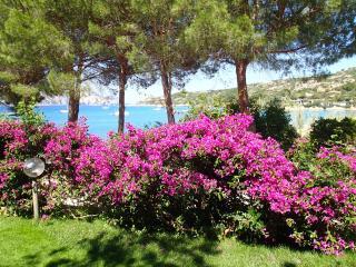 villa in riva al mare - cala girgolu - sardegna, San Teodoro