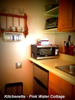 Kitchenette with mini fridge, microwave and toaster over