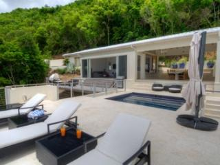 Comfortable 3 Bedroom Villa with Private Pool in Tortola