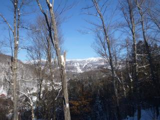Condo in the old village with fantastic view, Mont Tremblant