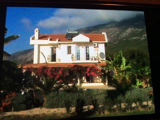 Villa paradise found, Ovacik